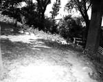 Outside 06. Sheppards' Backyard