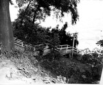 Outside 07. Stairs to Beach, Brush Where Green Bag Was Found