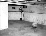 Inside 13.  North Room in Basement, Ash Pit