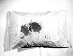 Other Evidence 06. Bloodstained Pillow, Reverse Side by Cleveland / Bay Village Police Department