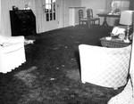 Inside 14.  Carpet Spots in Northeast Corner of Living Room