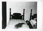 Room 21. Bloody Mattress