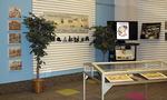 CEA003: Celebrating Euclid Avenue Exhibition