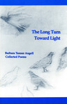 Long Turn Toward Light