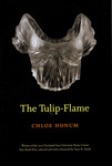 The Tulip-Flame by Chloe Honum