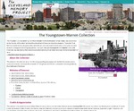 The Youngstown-Warren Collection