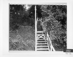 Defendant's Exhibit 092-12: Stairs Beach Brush