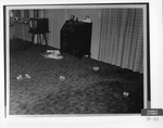 Defendant's Exhibit 076-33: Carpet In Living Room by Cleveland/Bay Village Police Department