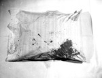 Pillow 01.  Original crime scene photo of Marilyn's pillow