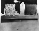 Kirk Photo 21: Cloths Used in Blood Experiments