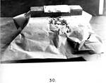 Kirk Photo 30: Wooden Block Simulating Skull Experiments by Paul Leeland Kirk