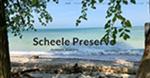 Scheele Preserve, Kelley's Island, OH by Maggie Carter