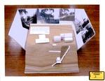 Plaintiff's Exhibit 0003: Sheppard Grounds Model