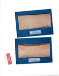 Plaintiff's Exhibit 0280: Unmarked tan envelope; apparent mattress cutting with stain