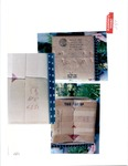 Plaintiff's Exhibit 0287: Box Seen in Ex. 286