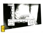 Plaintiff's Exhibit 0298: Richard Eberling's Wrist