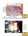Plaintiff's Exhibit 0321 & 0322: Wood Chip; Evidence Can