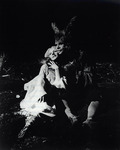 1982: Midsummer Night's Dream