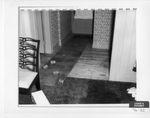 Carpet Runner in Hallway
