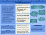 Perspectives on Adolescent Drug Use: Interviews with Community Providers